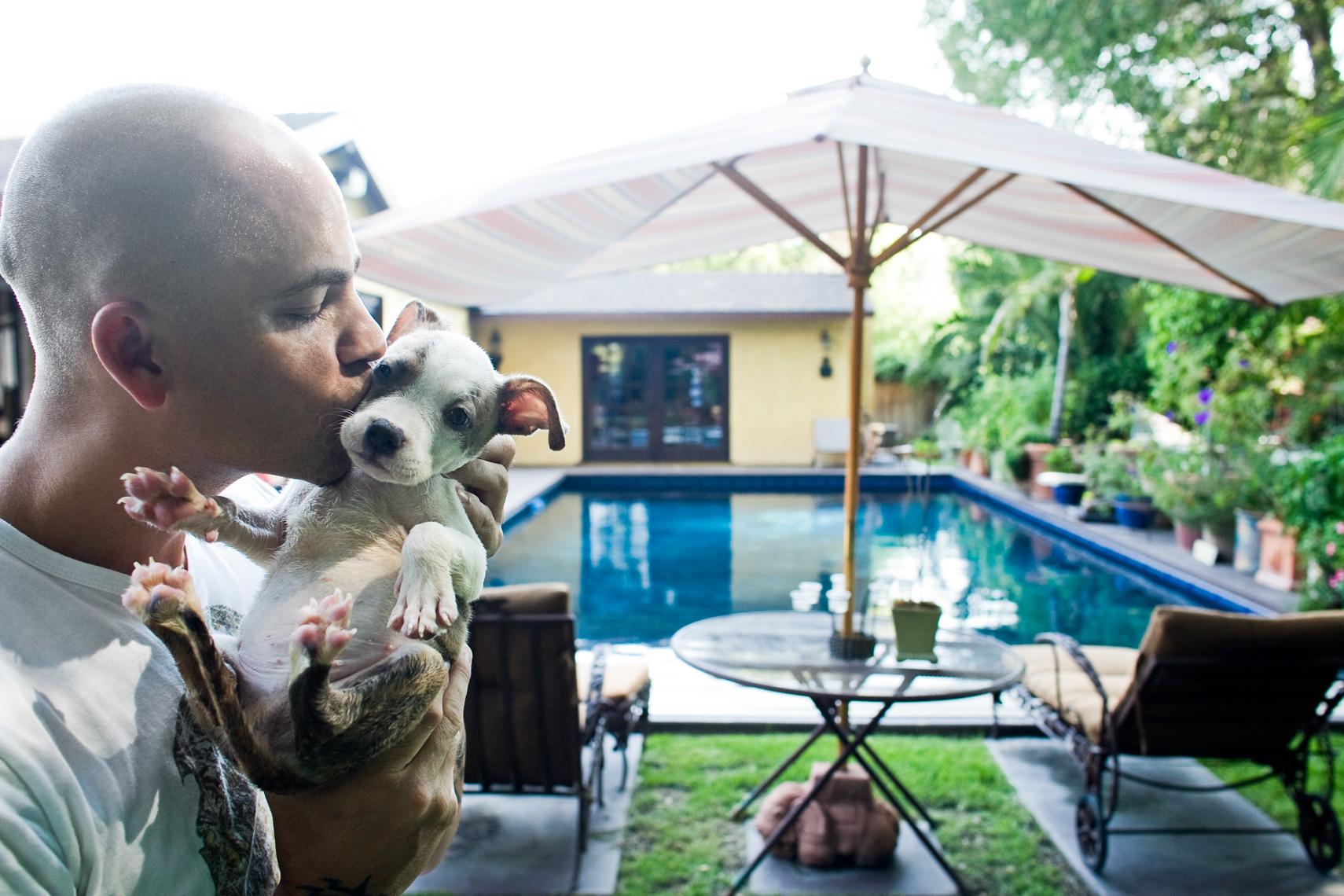 Los Angeles Dog Photography, Michael Brian, Tyson Kilmer kisses Pit Bull puppy, Dog Trainer