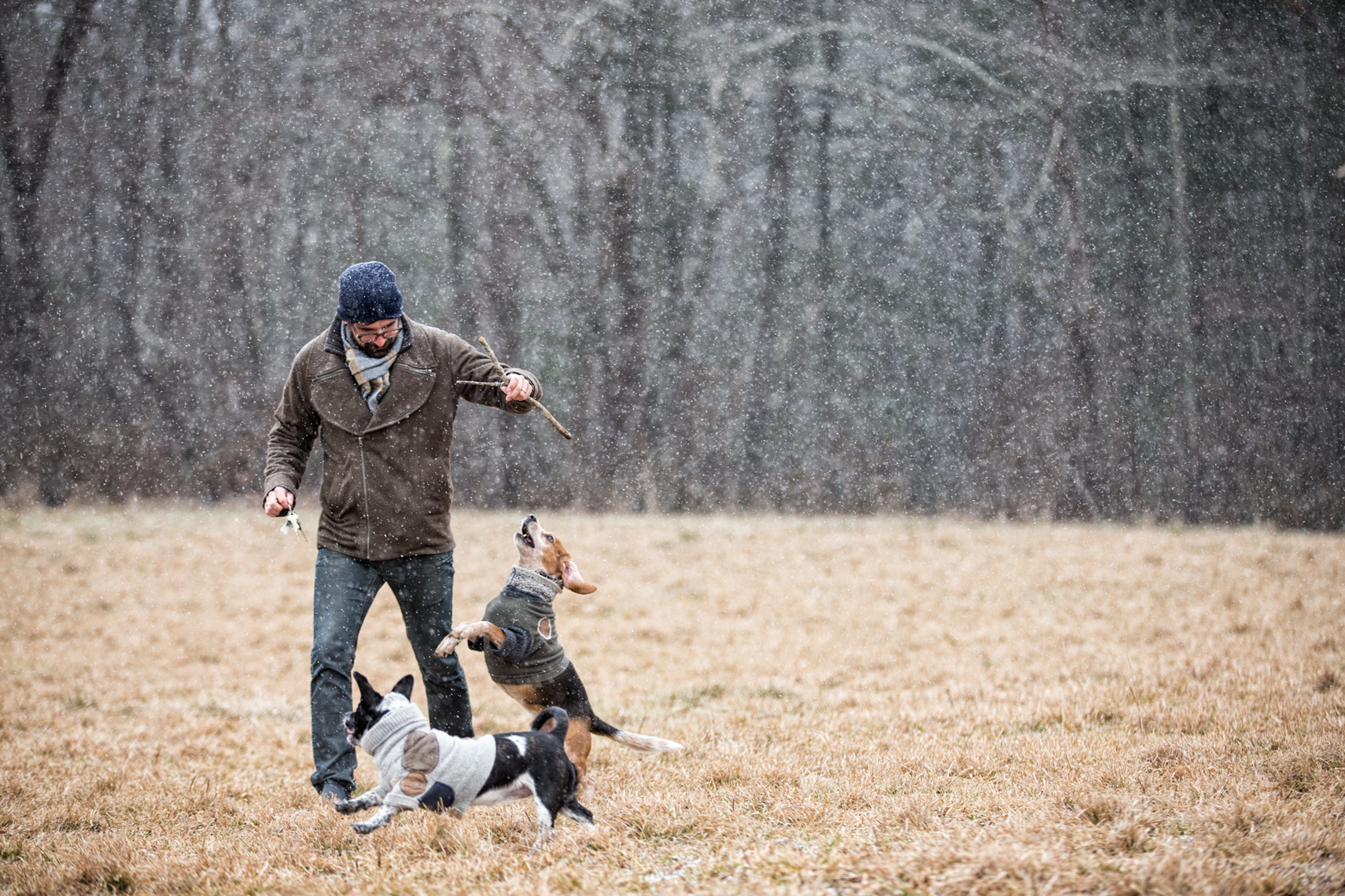 Los Angeles Dog Photography, Michael Brian, Purina ONE, Man playing in field with dogs, Zeus Jones, 28 Day Challenge, Asheville, North Carolina