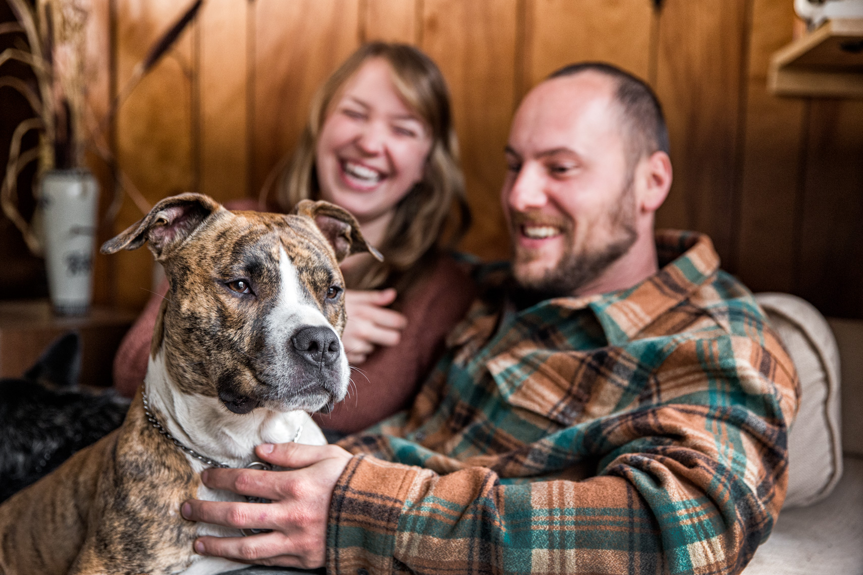 Los Angeles Dog Photography, Michael Brian, Pit Bull, Purina ONE, happy parents, Zeus Jones, 28 Day Challenge Asheville, North Carolina