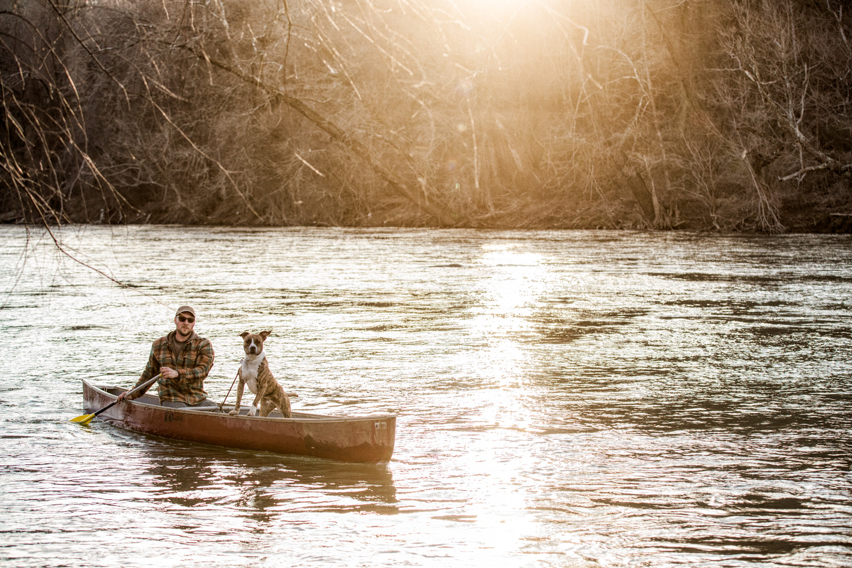Los Angeles Dog Photography, Michael Brian, Pit Bull in canoe, Purina ONE, Zeus Jones, 28 Day Challenge, Bywater, Asheville, North Carolina
