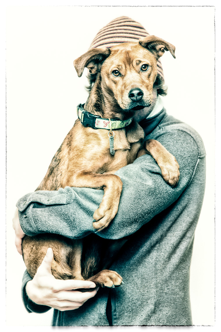 Los Angeles Dog Photography, Michael Brian, Zeus Jones Purina ONE 28 Day Challenge Asheville, North Carolina