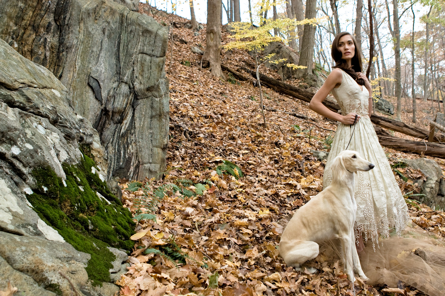 Los Angeles Dog Photography, Michael Brian, pet, cat, Woman in wedding gown in bare woods with Saluki dog
