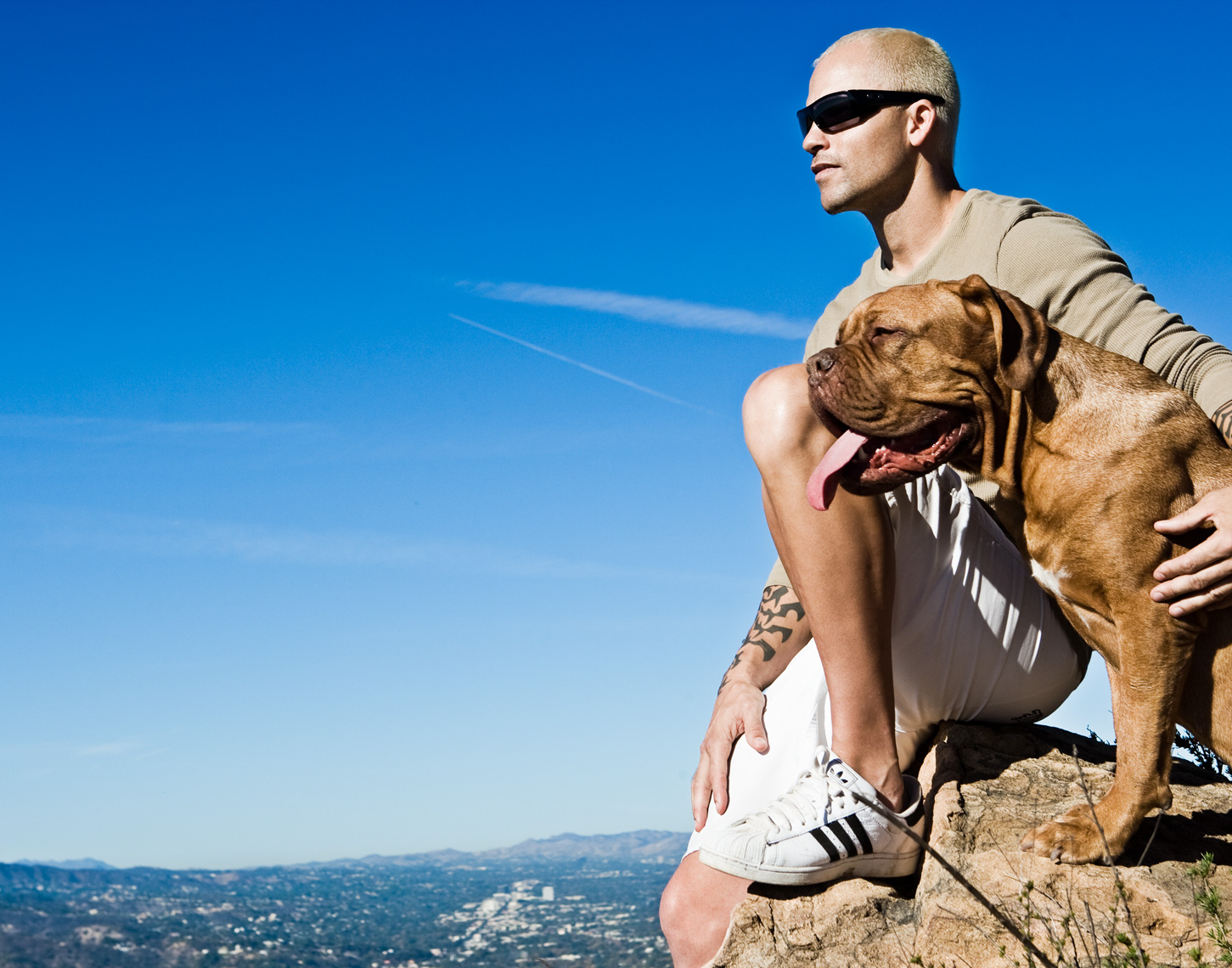 Los Angeles Dog Photography, Michael Brian, pet, cat, Tyson Kilmer and French Mastiff above Los Angeles, dog trainer