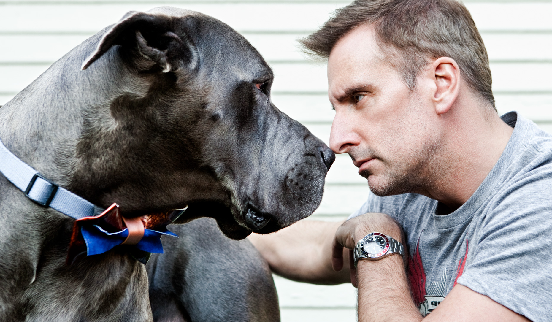 Los Angeles Dog Photography, Michael Brian, pet, cat, Brian Unger nose to nose with Great Dane
