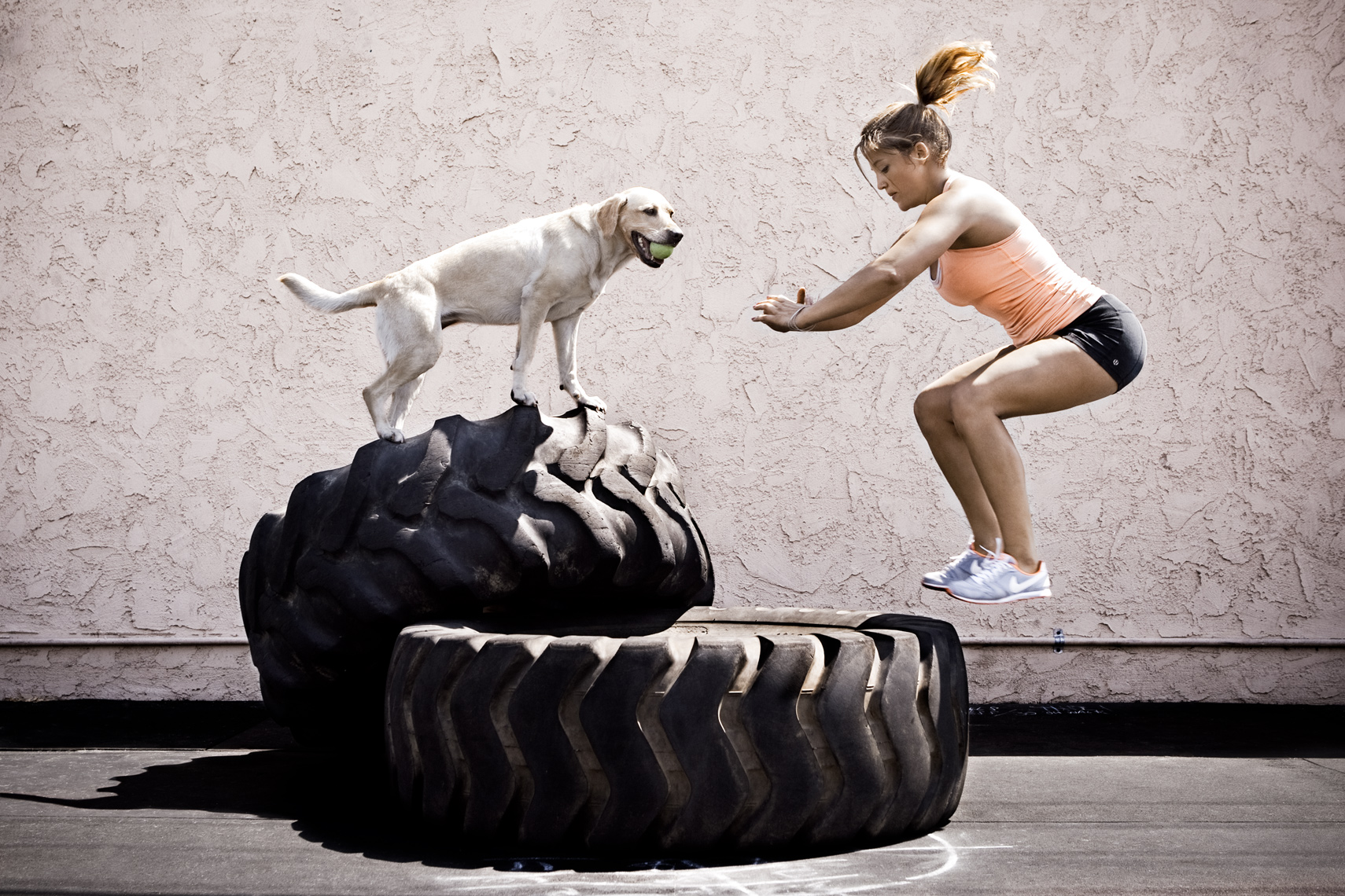 Crossfit, LA Dog Photography, Michael Brian, Los Angeles, Sports, Gilly Smith tire jumps, Yellow Labrador, Orange Coast Crossfit