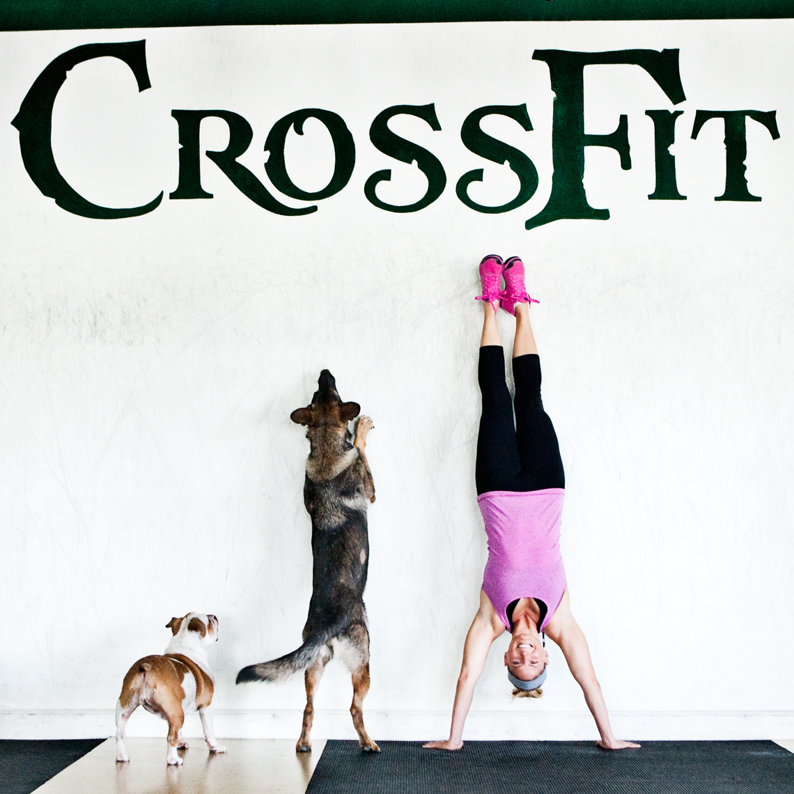 Crossfit, LA Dog Photography, Michael Brian, Los Angeles, Sports, Elizabeth Burns handstand with a German Shepherd and Bulldog, Dogtown Crossfit