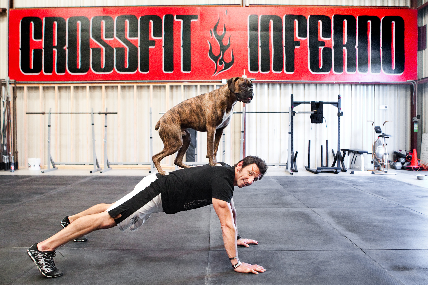 Crossfit, LA Dog Photography, Michael Brian, Los Angeles, Sports, Bill Grundler, pushup with Boxer on back, Crossfit