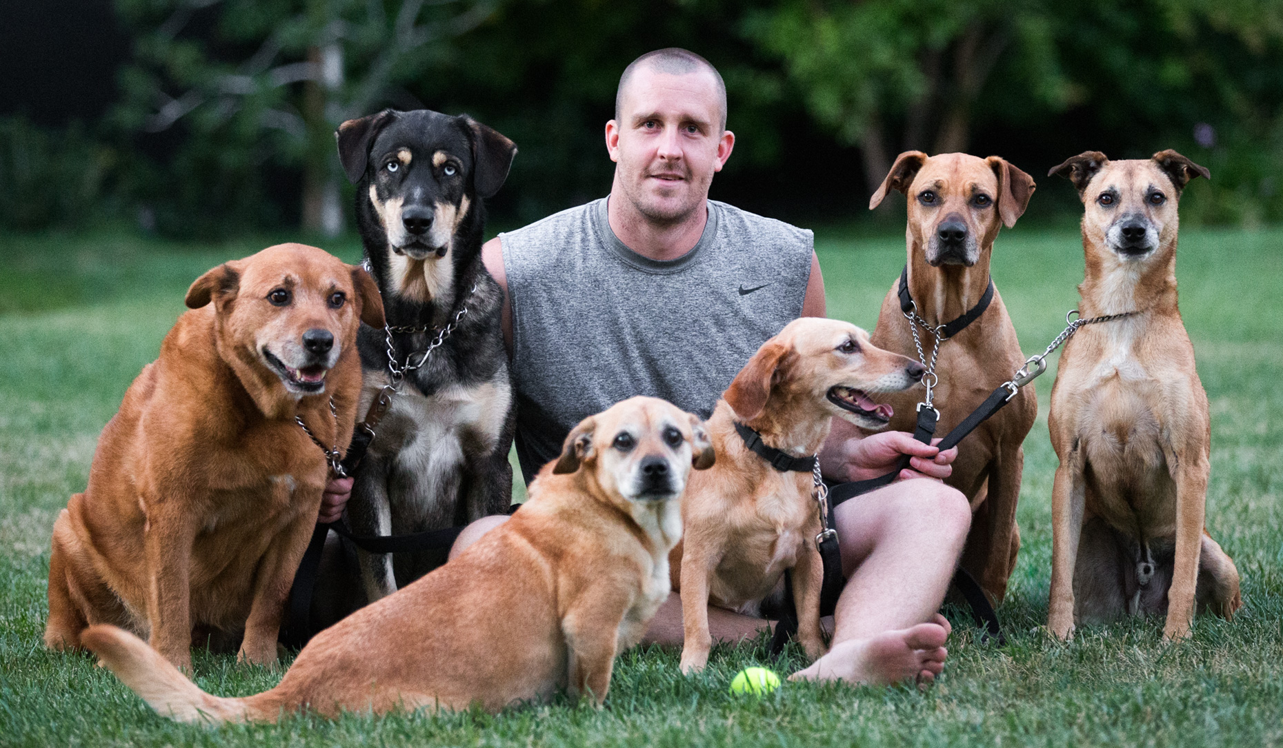 Los Angeles Dog Photography, Michael Brian, Man sitting with six rescue dogs