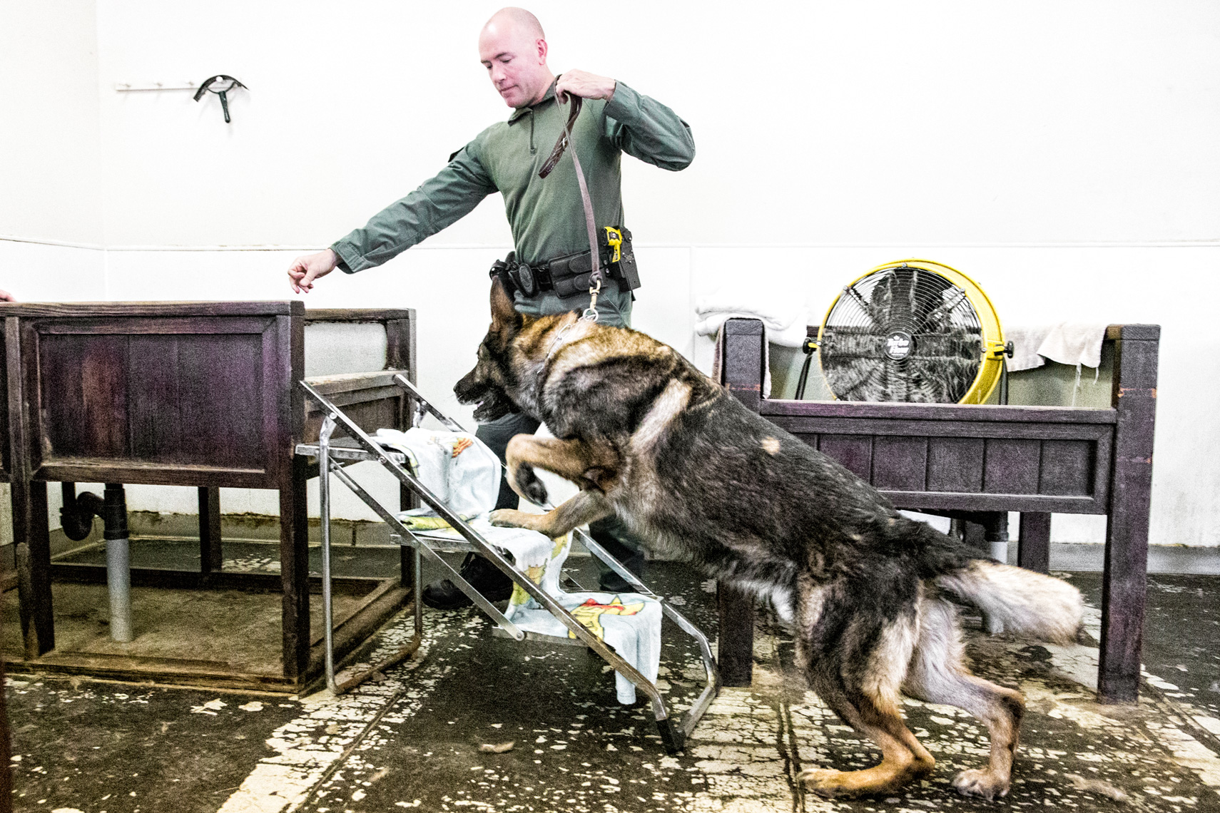 Los Angeles Dog Photography, Michael Brian, Santa Barbara Police officer with K-9 Brag for dog bath