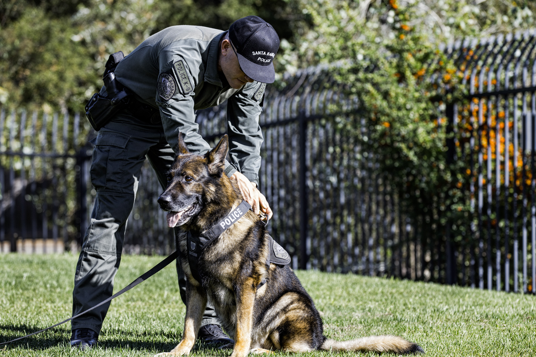Los Angeles Dog Photography, Michael Brian, Santa Barbara Police K-9 Brag prepares for training with officer David Hedges