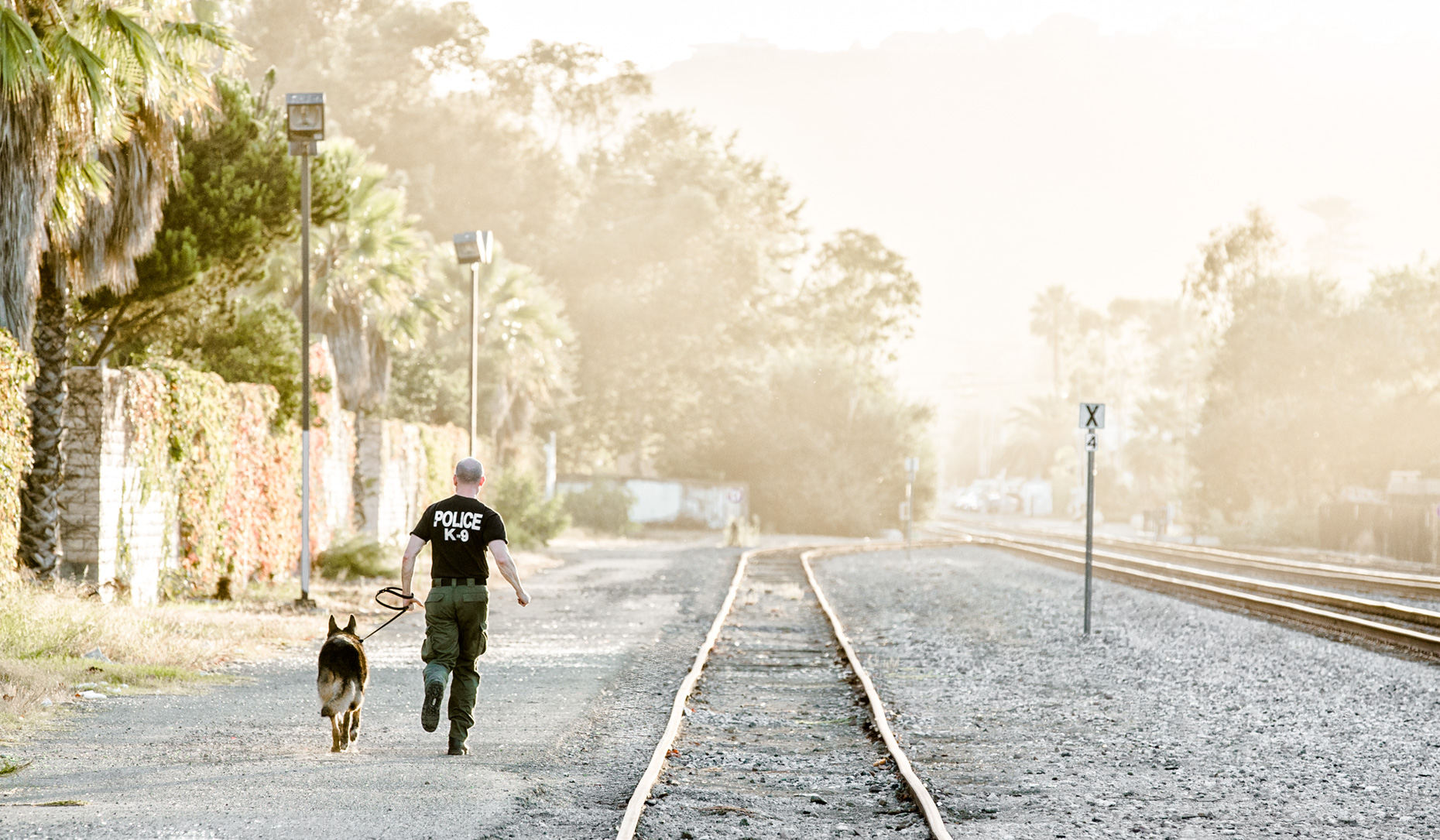 Los Angeles Dog Photography, Michael Brian, Santa Barbara Police K-9 Brag jogs after training with officer David Hedges
