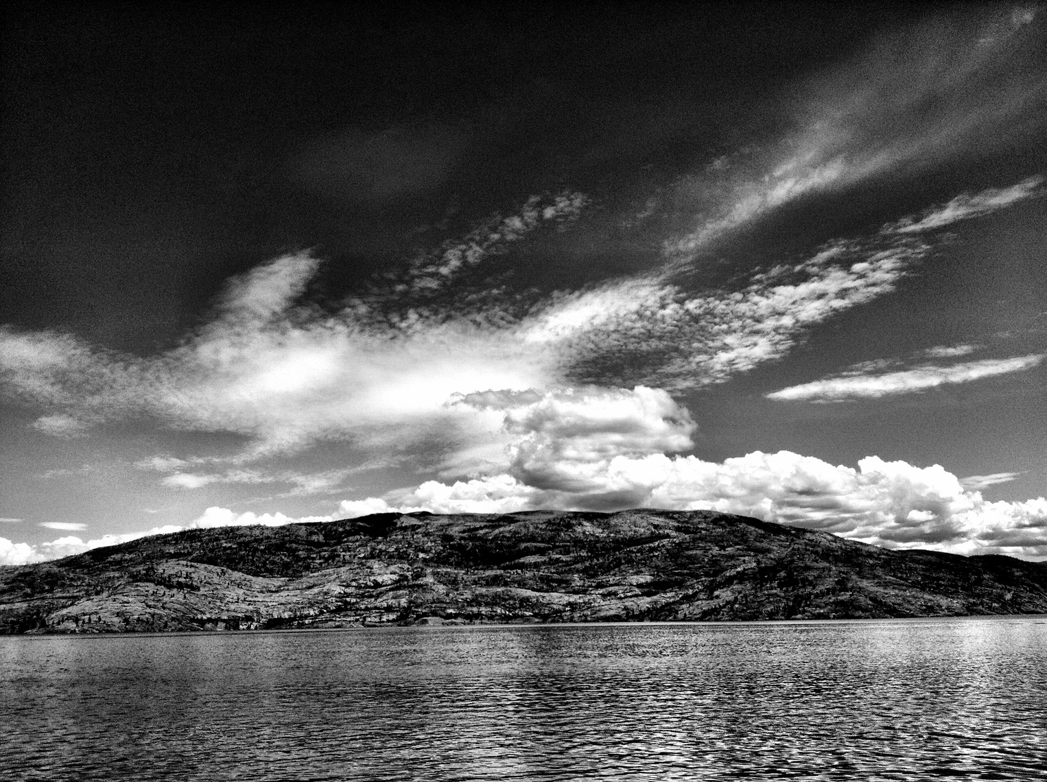 Los Angeles Dog Photography, Michael Brian, Canadian lake landscape, iphone photography, iPhoneography