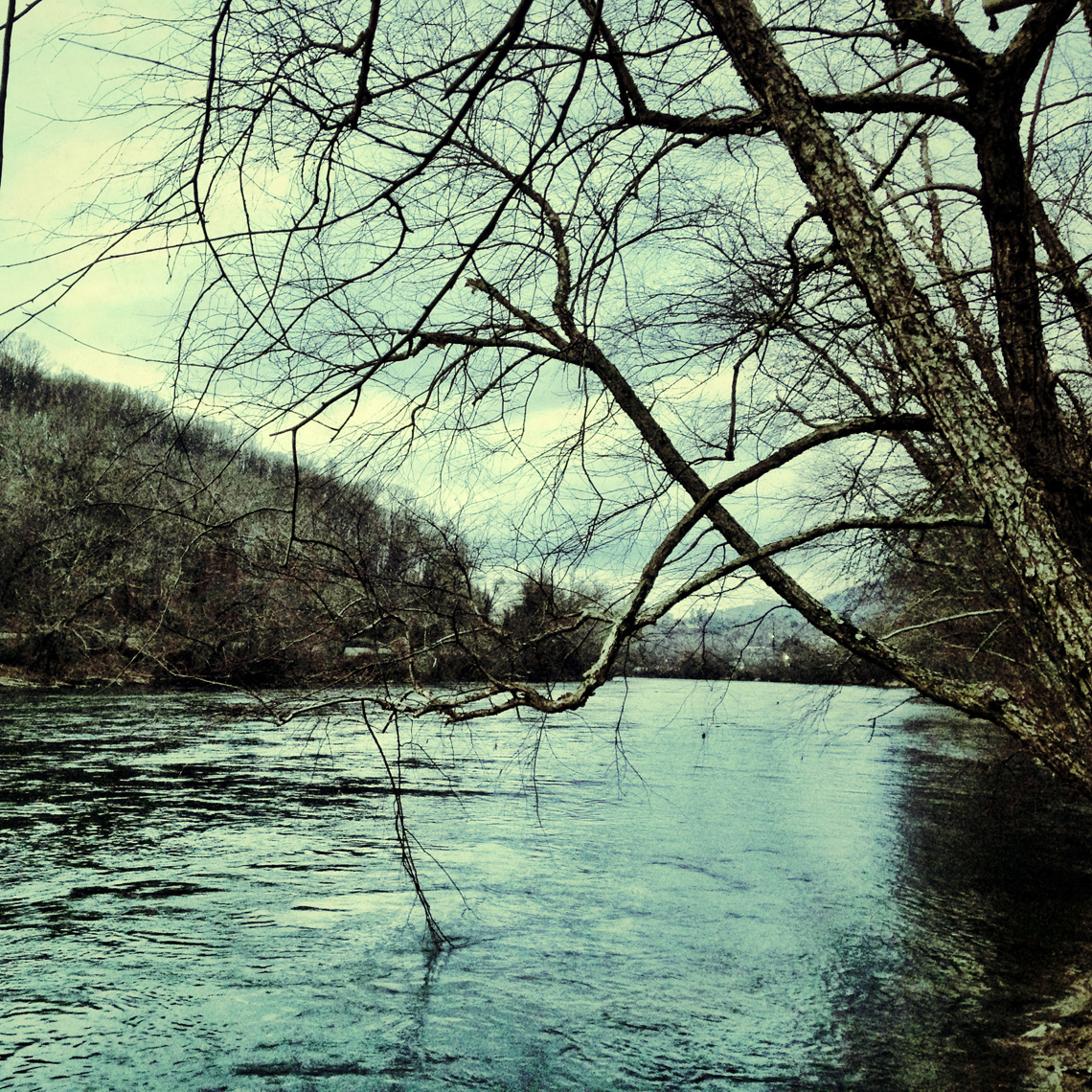 Los Angeles Dog Photography, Michael Brian, Asheville, North Carolina, River at Bywater, iphone photography, iPhoneography