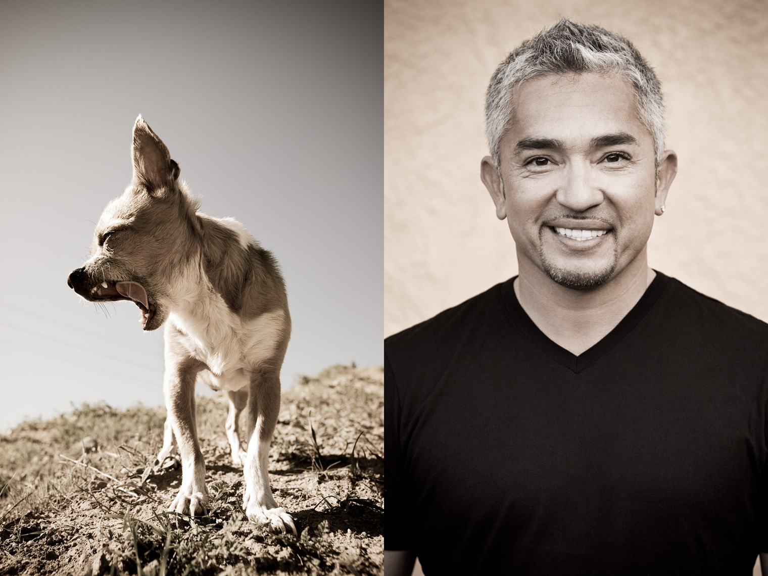 Los Angeles Dog Photography, Michael Brian, Cesar Millan, Dog Whisperer, Cesar