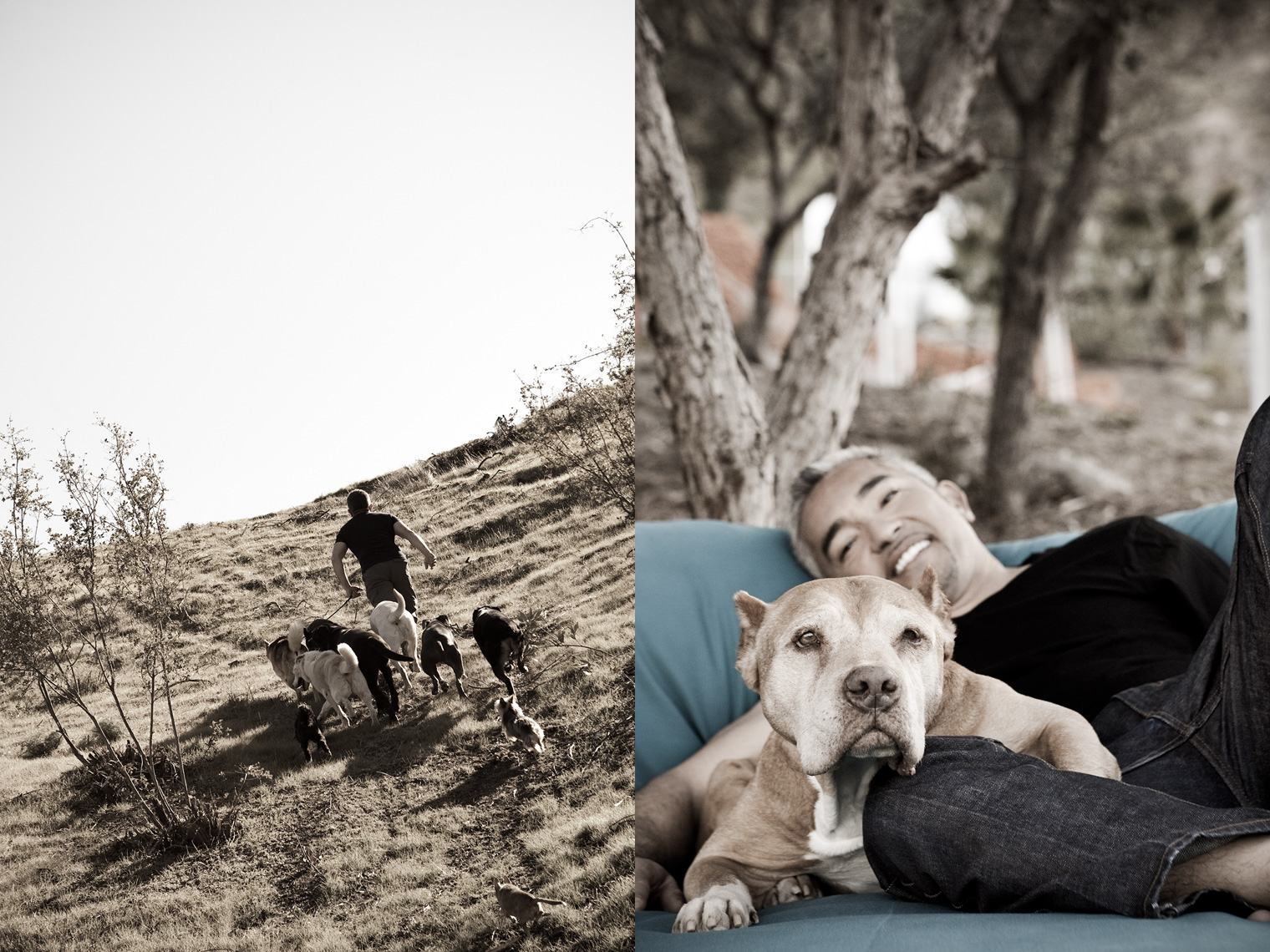 Los Angeles Dog Photography, Michael Brian, Cesar Millan, Dog Whisperer, Pit Bull Daddy, Cesar