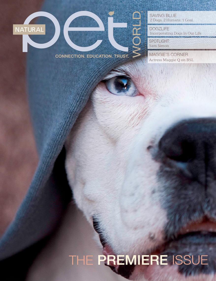 Los Angeles Dog Photography, Michael Brian, White Boxer dog in hoodie, magazine cover