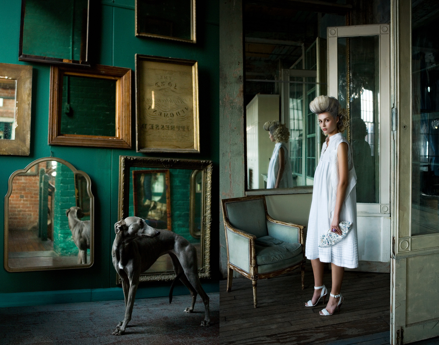 Los Angeles Dog Photography, Michael Brian, pet, cat, Marie Antoinette fashion story, Whippet, Metropolitan building, Long Island City, Footwear Plus