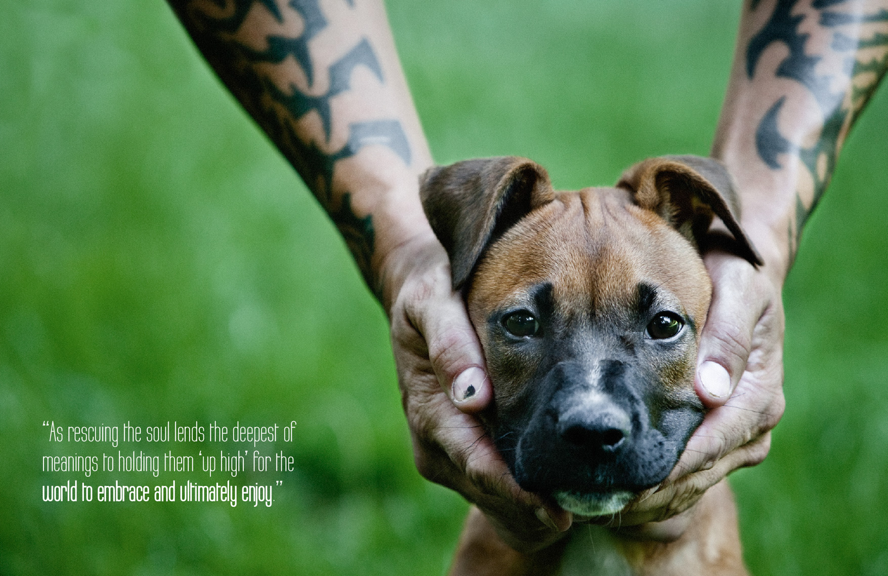 Los Angeles Dog Photography, Michael Brian, Tyson Kilmer, Dog Trainer, Rescuing the Soul